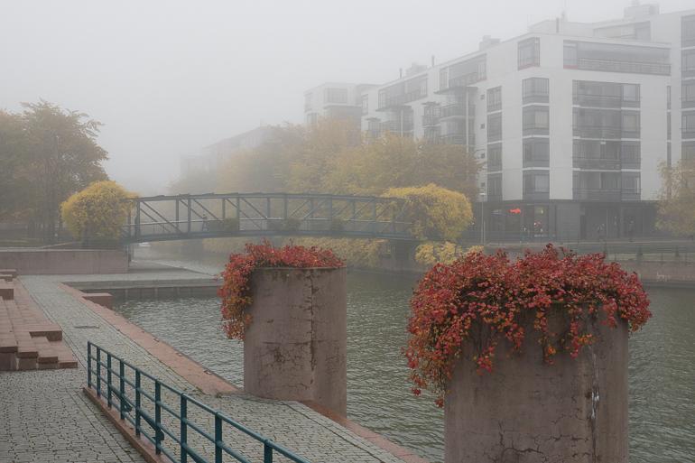 ruoholahti_foggy