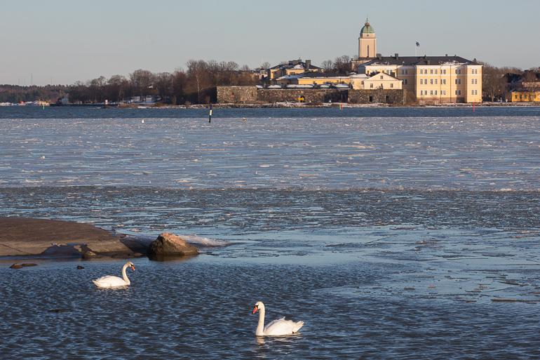 icereport