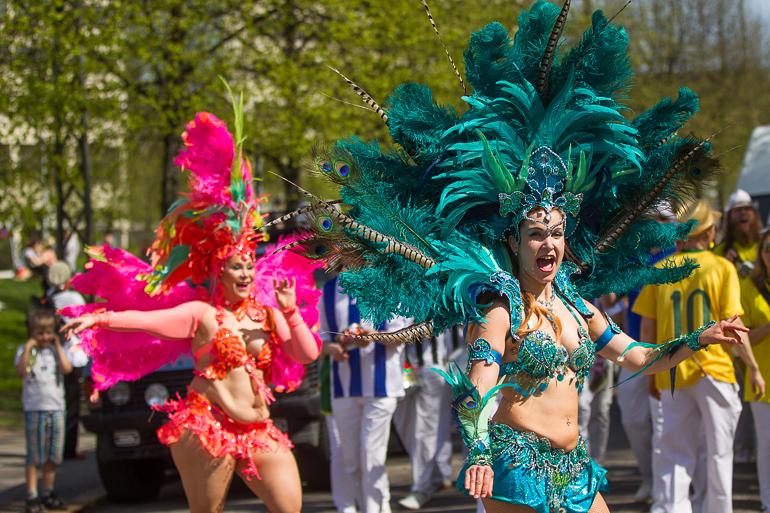 kalliokukkii_parade_samba_imperiodopapagaio-2
