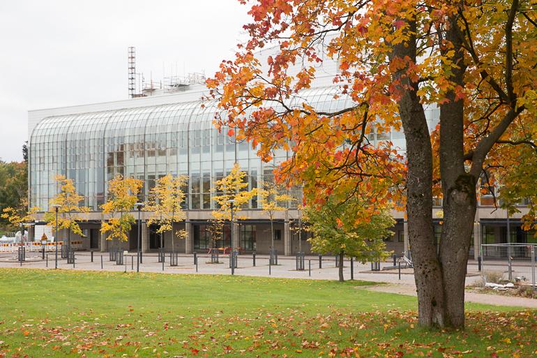autumnreport
