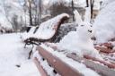 snowbunny
